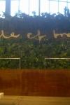greenwall/hanging garden